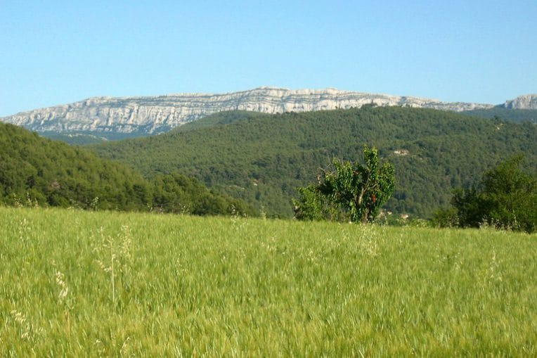 Randonnée Provence